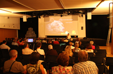 exposition film Film documentaire ours